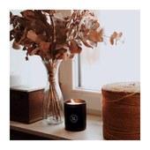 Lumière d'automne… Peu présente depuis quelques semaines mais c'est pour mieux préparer cette fin d'année et surtout la prochaine… Bientôt nous vous présenterons notre nouvelle fragrance… En attendant, voici la nouvelle version de nos bougies et de notre nouveau logo. Plus de détails bientôt. . . . 📷 @alice_gueguin