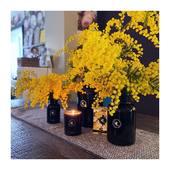 Un parfum de soleil au cœur de l'hiver pour terminer un week-end coloré de jaune MIMOSA...  Merci à @mariepaolini pour ces bouquets parfumés ! . . . 📷 @mademoisellelulubelle_bougies