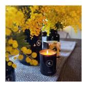 «Sa senteur délicate, ses facettes poudrées de violette, ajoutent à son charme suranné. Une prolongation de l'été en plein cœur de l'hiver...» Indémodable MIMOSA... Merci à @mariepaolini pour ce cadeau enchanté ! . . . 📷 @mademoisellelulubelle_bougies